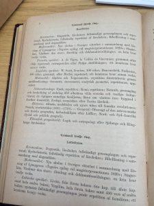 Kursplan 1885 för sista året, med kristendom, modersmål, franska, engelska, matematik, naturvetenskap, historia, geografi och filosofi.